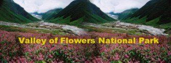 Uttarakhand posts: Valley of Flowers