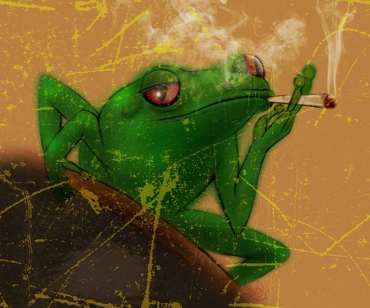 """Check out my @Behance project: """"Smoking Frog"""" https://www.behance.net/gallery/47338747/Smoking-Frog"""