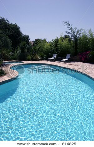 Kidney shaped pool home inspirations pinterest for Images of kidney shaped pools