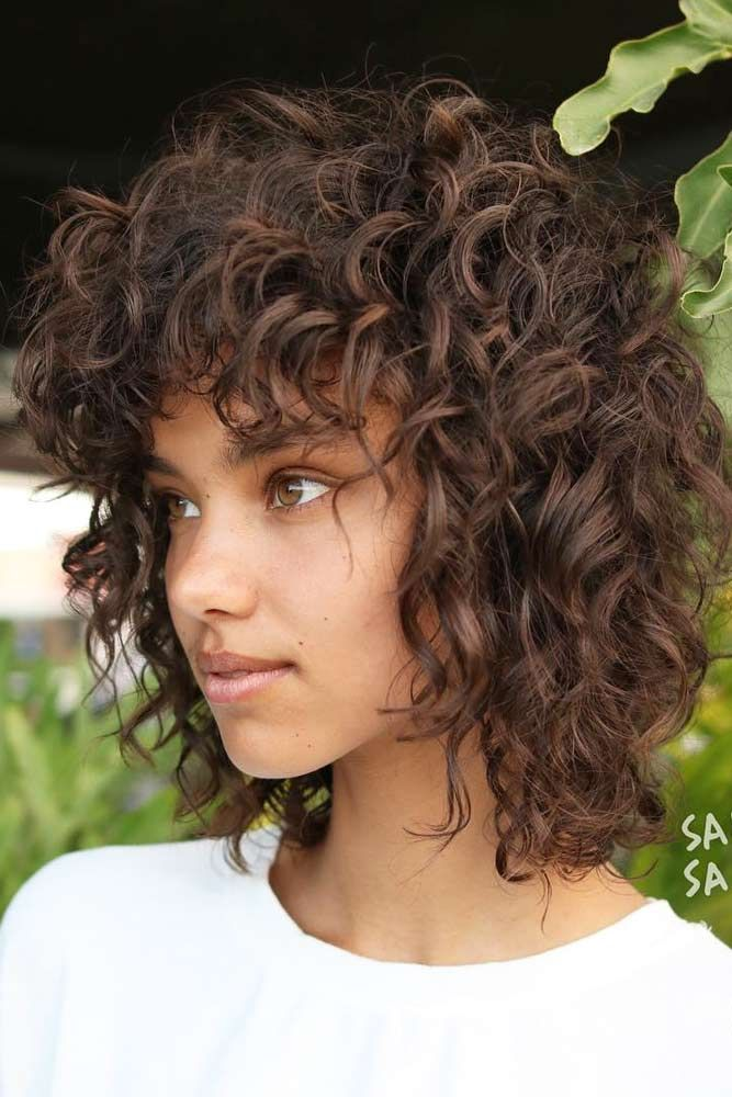 styles for haircuts best 25 curly bob hair ideas on bobs for 5434 | 619bf14944943b06a5dfeead3b5434fa