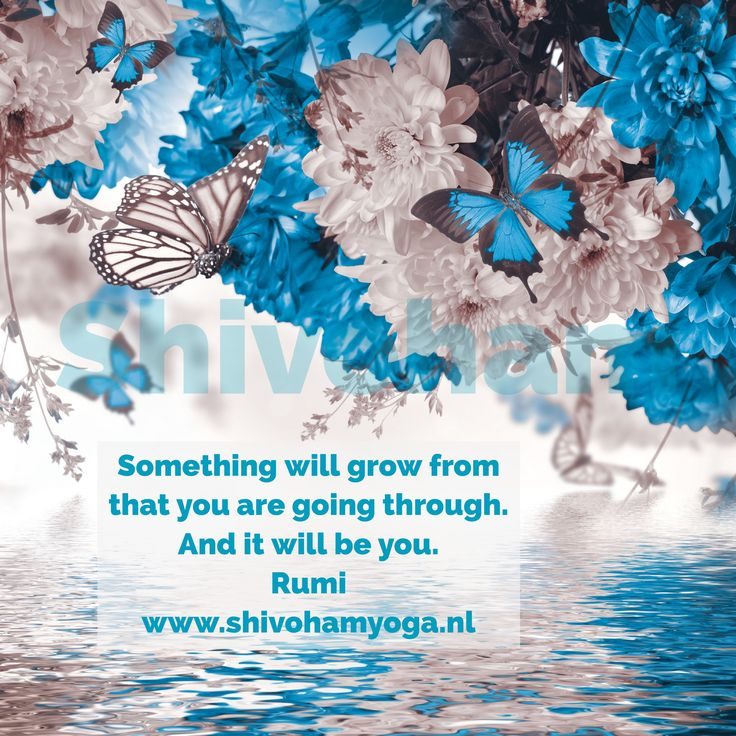 Something will grow from that you are going through. And it will be you Rumi ♡ http://www.shivohamyoga.nl/ ॐ