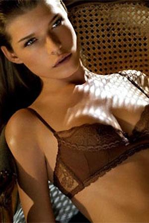 Sexy Brown Bra