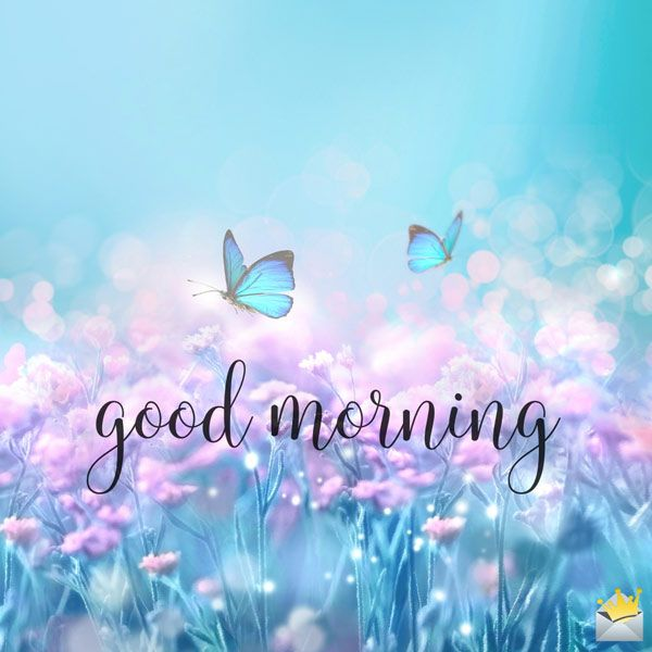 Always On The Sunny Side The Best Good Morning Pictures Ever Good Morning Beautiful Images Morning Pictures Good Morning Picture Good morning pic hd funny good morning wishes cute good morning texts good morning text messages latest good morning images good morning photos download good morning image. good morning beautiful images