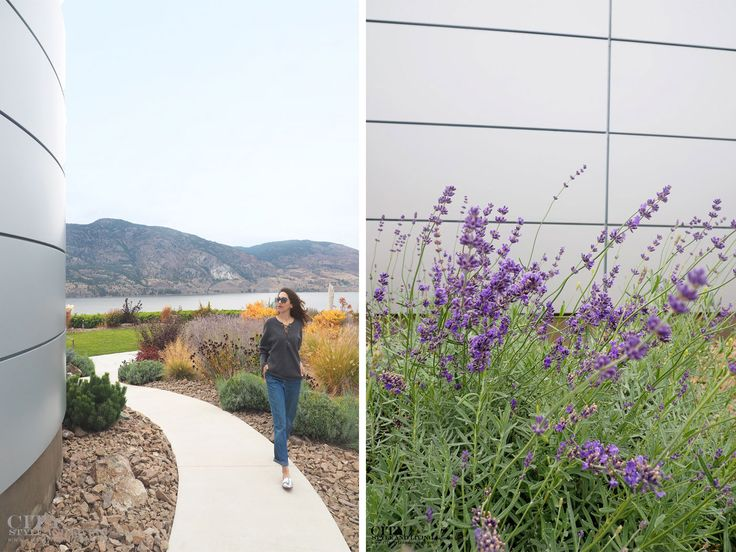 The Editors Notebook exploring Painted Rock Winery in Penticton, Okanagan, British Columbia #styleblogger #fashion #style #fashionblogger #styleinspiration #streetstyle #ootd #outfit #casual #denim #laceupsweater
