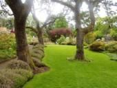 Find Homes in the Fairfield District of Victoria: Google Image, Modern Gardens, Gardens Ideas, Abkhazi Gardens, Awesome Gardens, Beautiful Backyard, Gardens Art, Gardens Yard, Instant Lawn