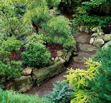 A natural-looking pathway is an excellent match for raised beds overflowing with conifers.
