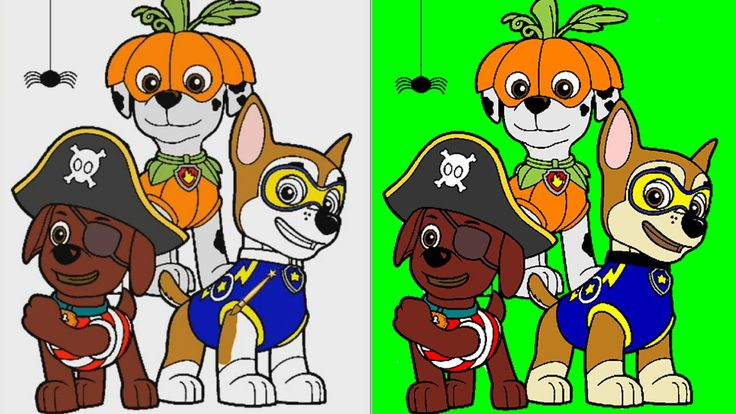 Paw Patrol Coloring Pages for Kids Coloring Games Paw