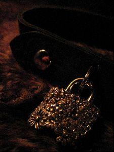=o.o= Kitten Cream =v.v= Kittenplay Catplay =*.*= Kitten Costumes =q.p= Bondage Collar locks =^.^=