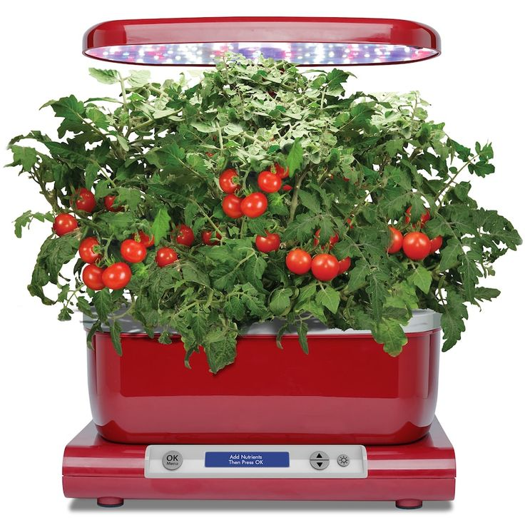 Miracle-Gro AeroGarden Harvest LED with Gourmet Herb Seed Pod Kit, Red