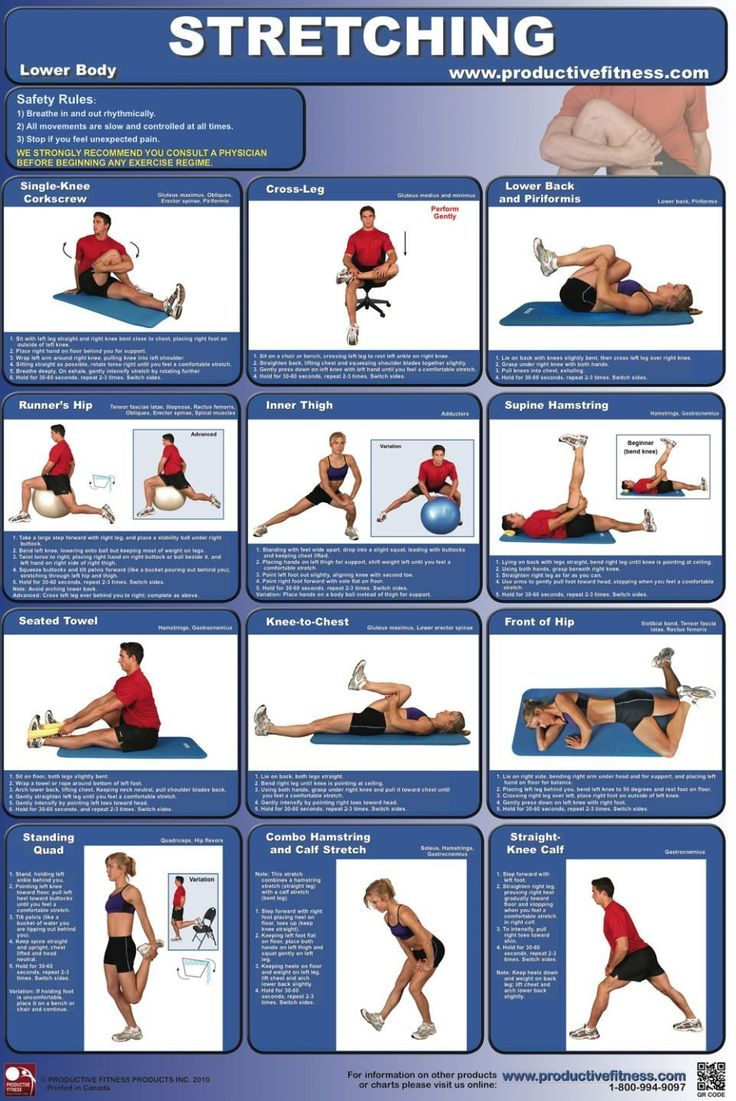 Exercise Stretches Laminated Fitness Poster | Pinterest ...