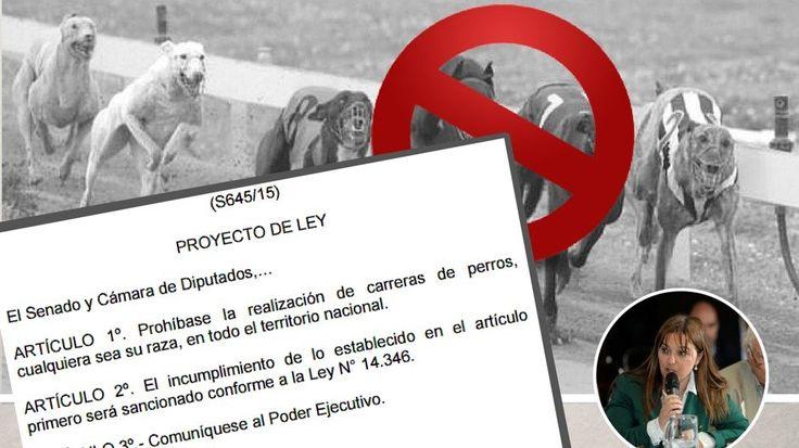 Dirigida a Honorable Cámara de Senadores y Diputados de la Nación Argentina Prohibir en todo el territorio nacional la realización de carreras de perros, cualquiera sea su raza.