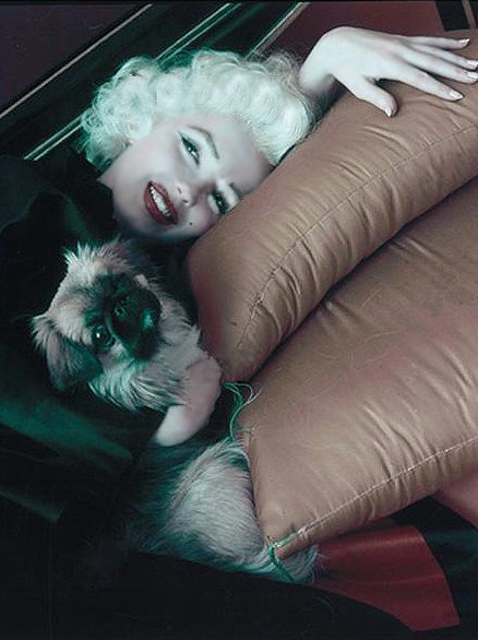 Marilyn Monroe & Peke