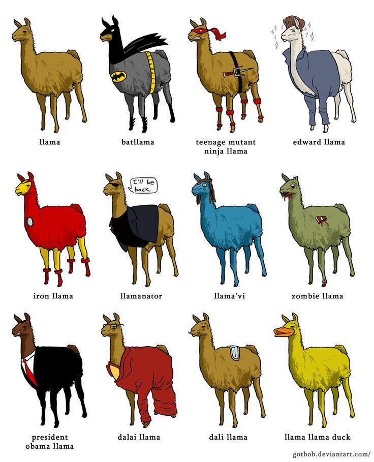 LlamaramaLaugh, Awesome, Funny Pictures, Burning Flames, Random, Funny Llamas, Funny Stuff, Llamas Ducks, Animal