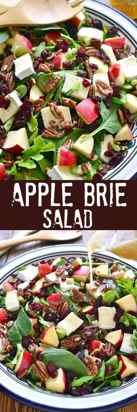 This Apple Brie Salad combines the crispness of apples with the creaminess of Brie cheese in a delicious salad that's perfect for winter!