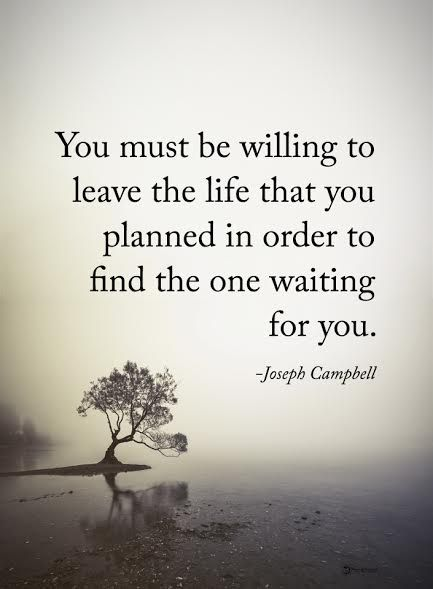 You must be willing to leave the life that you planned in order to find the one waiting for you. - Joseph Campbell  #powerofpositivity #positivewords  #positivethinking #inspirationalquote #motivationalquotes #quotes #life #love