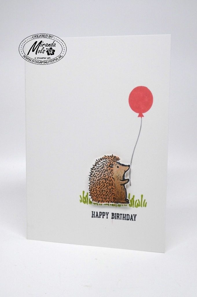 1298 best stampin up birthday images on pinterest anniversary stampin utopia bestel stampin up hier creative birthday cardscard ideas bookmarktalkfo Gallery
