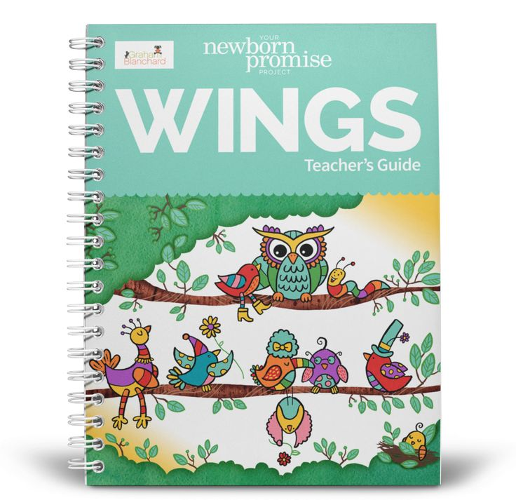 (Graham Blanchard) The ultimate SEL program for your church class, Christian school, mom's day out, or homeschool, this 8-lesson unit study accompanies Your Newborn Promise Project Wings, an activity and coloring book for ages 4 and up based on John 3 and the Gospel of Jesus.
