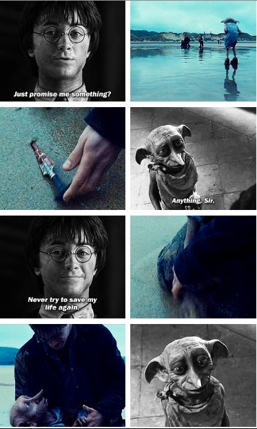You've got to read the books to really understand how great Dobby was!