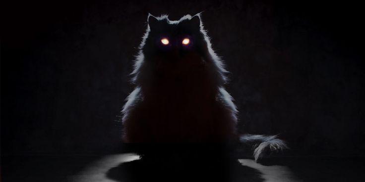 Können Tiere Geister sehen
