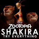 Try Everything by Shakira on the Top Hits Channel of RadioTunes