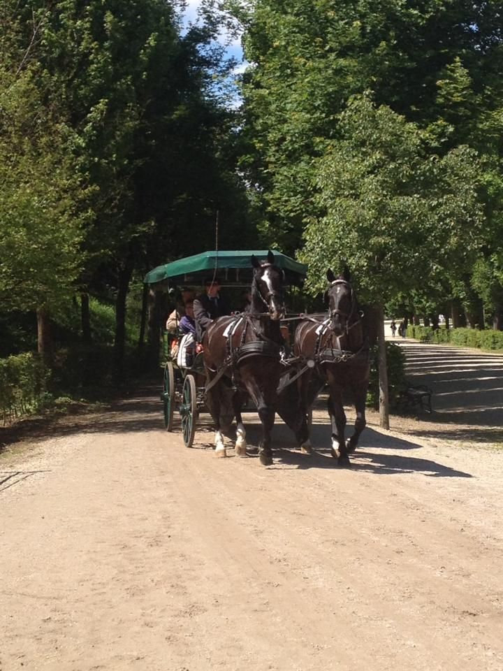 WELCOME TO MY ROMANTIC JOURNEY Although, I have lived in Vienna for more than 20 years, I would hardly consider myself Austrian. No,not even Viennese. Many friends are astounded that I have chosen not to accept Austrian citizen...