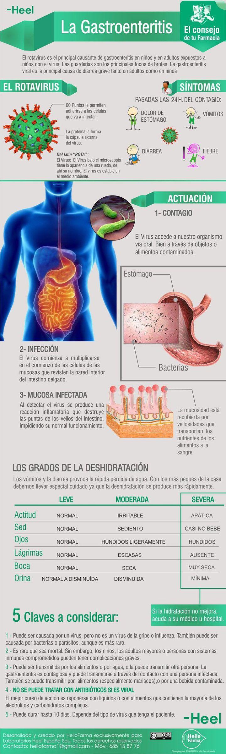La gastroenteritis. Cómo se contagia y cuales son sus síntomas. #infografía #gastroenteritis