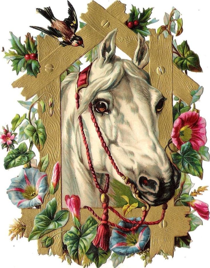 Oblaten Glanzbild scrap diecut chromo Pferd 15,8cm  horse cheval head buste gold: