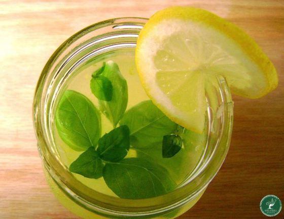 Limonada com Manjericão