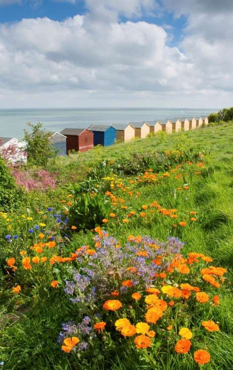 Whitstable, UK - Getty Images