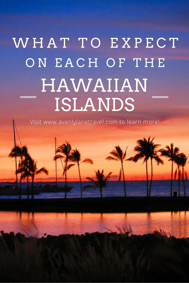 For that dream tip to Hawaii! A breakdown of all of the Hawaiian islands