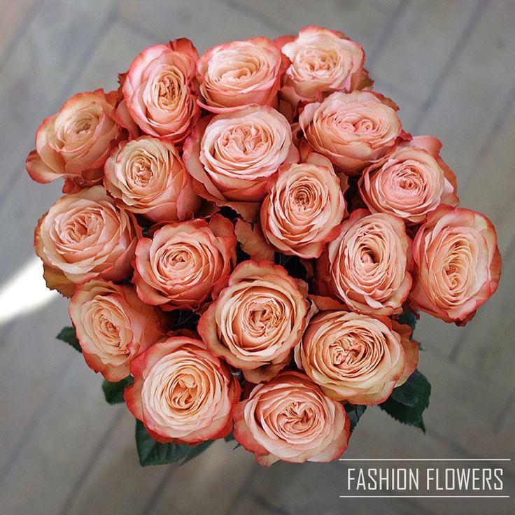 Эта элегантная и утонченная роза обладает удивительным и уникальным цветом, оттенки шампанского переходящие в теплый и нежный персиковый цвет🌸💫  C любовью, Fashion Flowers💞  +7(3952) 588-500 Сайт: www.f-f.flowers Viber/WhatsApp 8964-35-88-500 🏦 г. Иркутск, ул. Партизанская 29  #FashionFlowers_irk #Иркутск #розыиркутск #розыдоставка #detail #доставкацветовиркутск #подарки #декор #плаймпакет #коробкидляцветов #БукетДняИркутск #ЦветыИркутск #Irkutsk #подаркиИркутск #доставкаИркутск…
