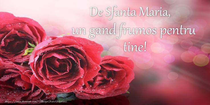 De Sfanta Maria, un gand frumos pentru tine!