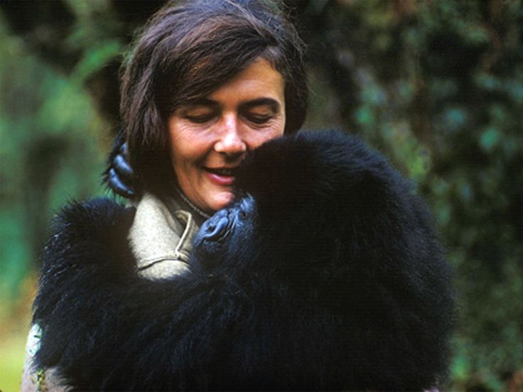 "Dian Fossey (1932 - 1985)  Author (""Gorillas in the Mist"") and animal activist, Fossey launched an aggressive attack against gorilla poaching. She was found murdered in 1985."