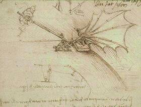 Movimento reale delle ali di un uccello , Leonardo da Vinci