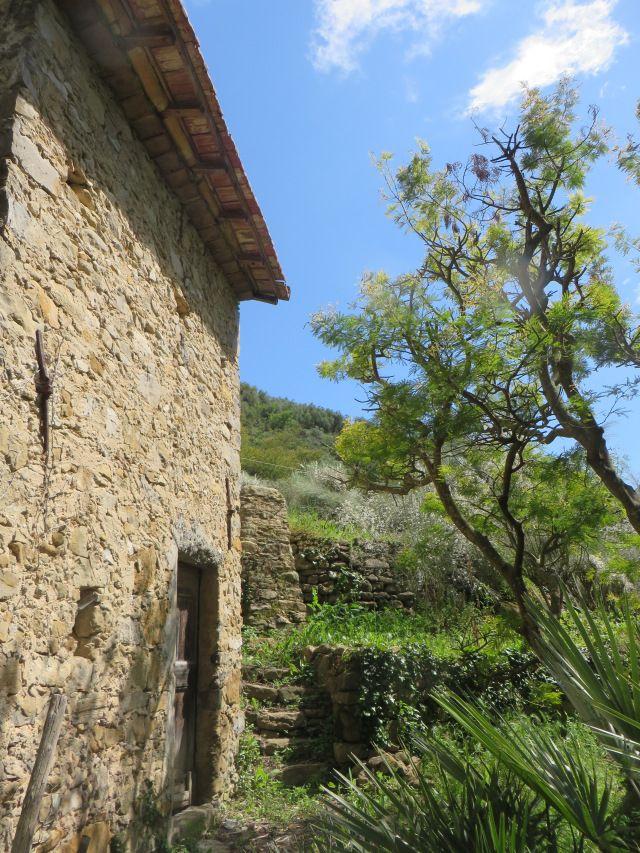 Bordighera (IM)  vallone del torrente Sasso