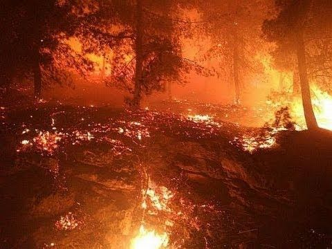 Wildfires Ravage Israel; Arson Blamed For Some