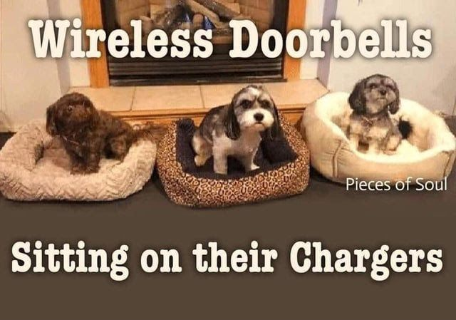 Image result for wireless doorbells on their chargers