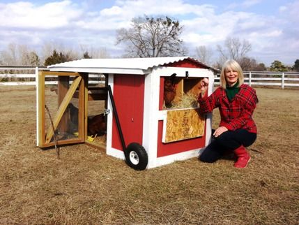 The Classy Coop Giveaway grand prize was given a good home with our contest winner and her backyard chickens. We were happy to see this mobile chicken coop is already being broken in. Bring on the eggs!