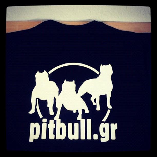 #Pitbullgr