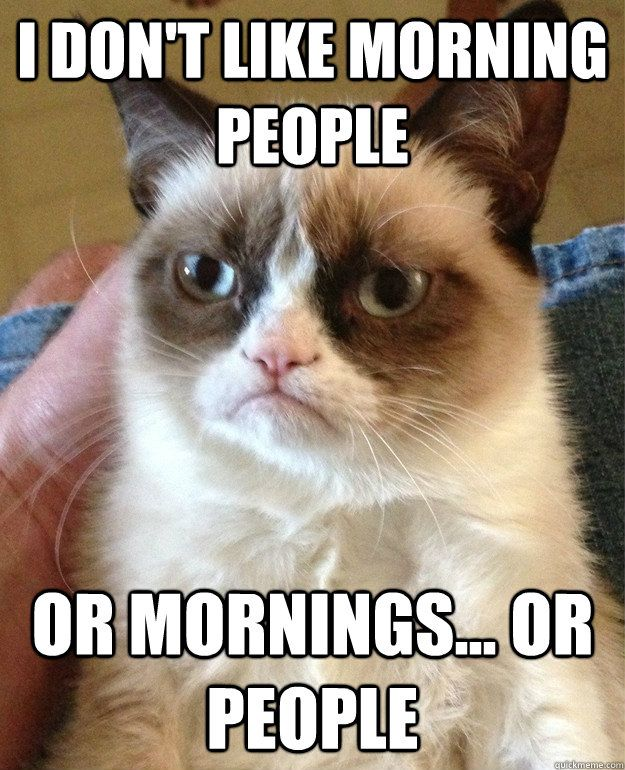 "Grumpy Cat;s view on morning people ""I don't like morning people ...or"