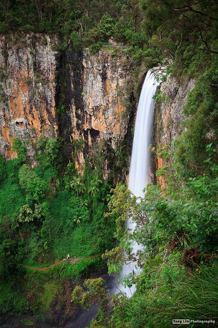 Purlingbrook Falls, Springbrook National Park, South East Queensland.