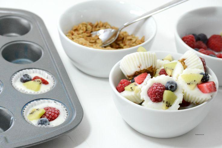 Frozen Yogurt Bites - The Idea Room