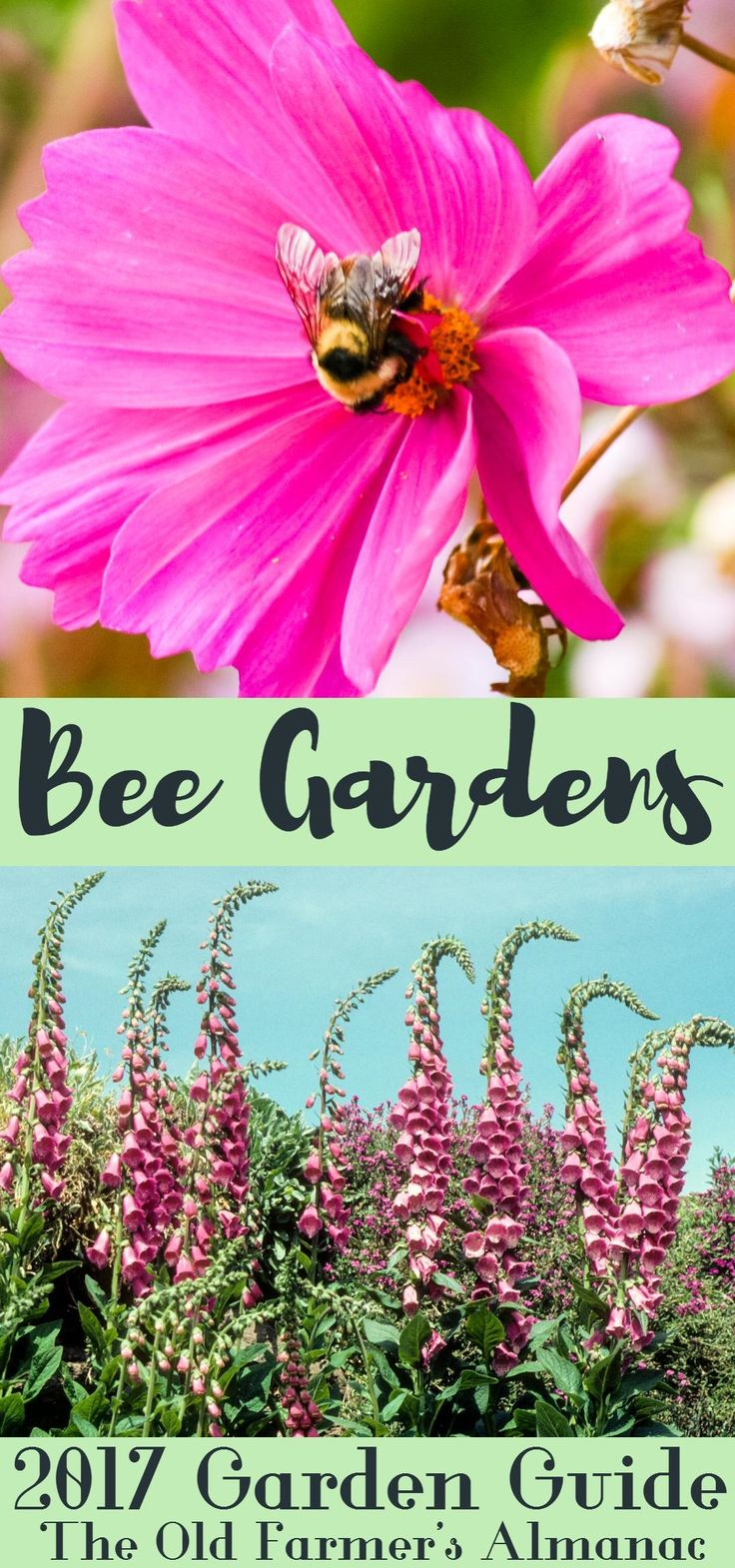 120 best 2017 garden guide images on pinterest | garden guide