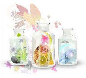 aromas de perfumes