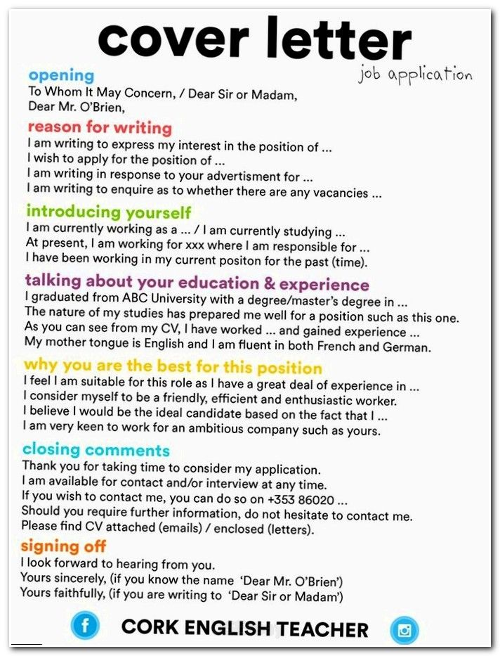 My university essay in english