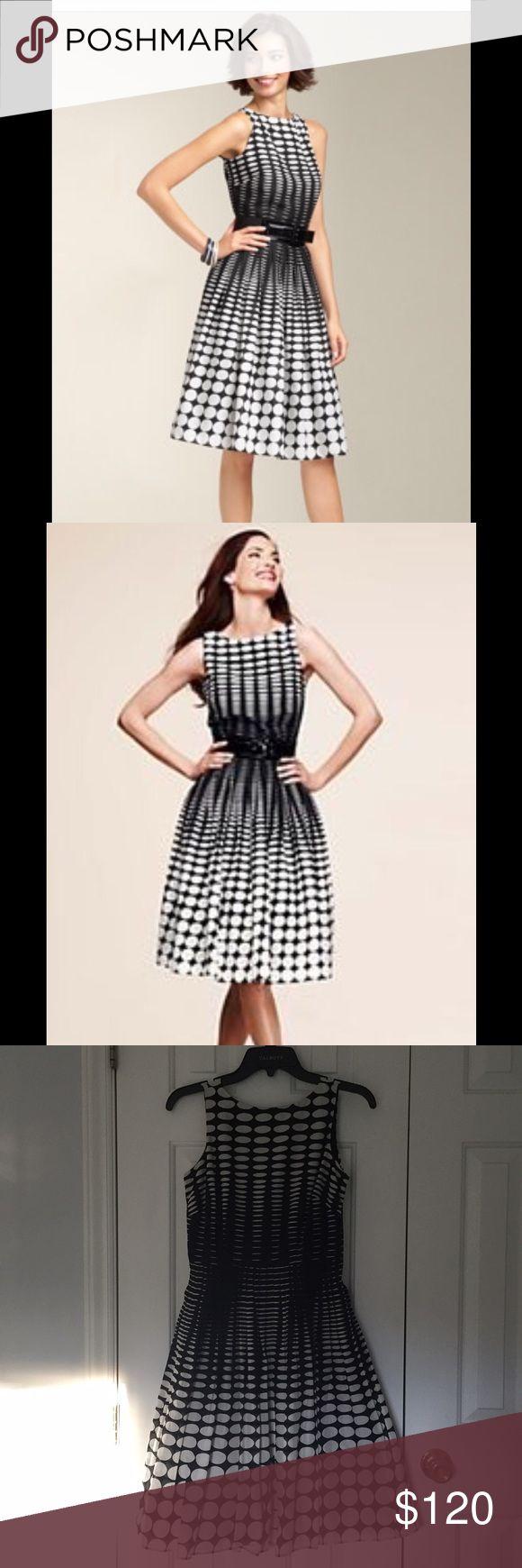 Talbots Classic Black and White Dress! Petite women's black and white sleeveless summer dress! Talbots Dresses