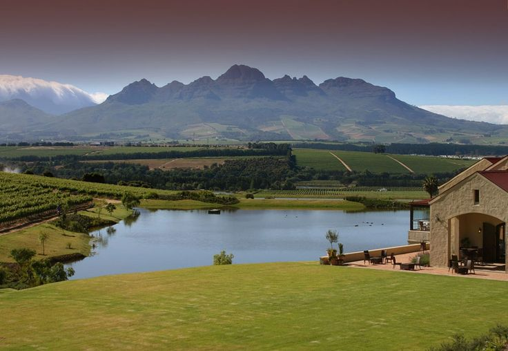Asara Wine Estate - views of the Helderberg - close to Kuils River - Cape Town