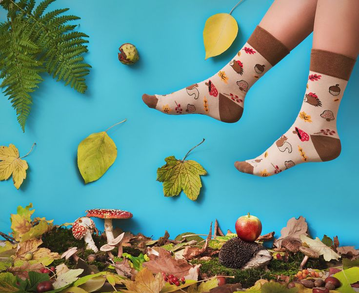 8.00$ - Autumn / Fall socks with hedgehog, squirel | men socks | colorful socks | cool socks | womens socks | crazy socks | patterned casual socks