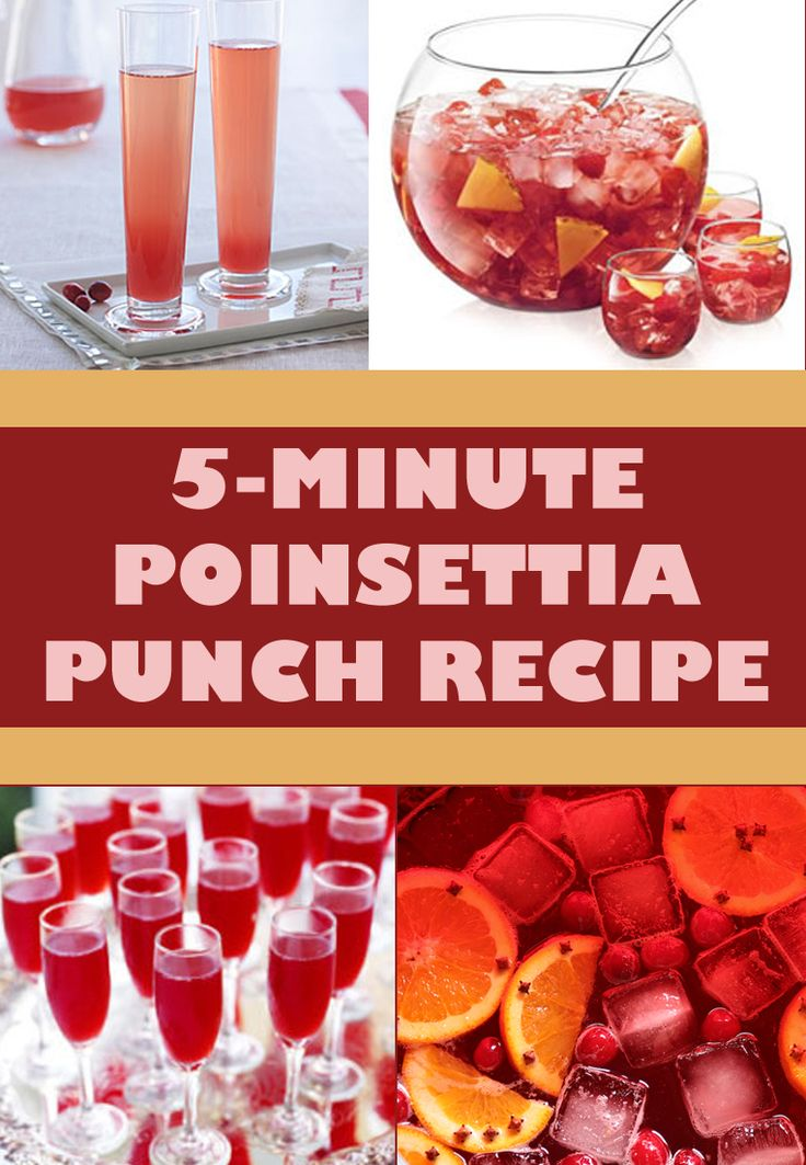 Poinsettia punch recipe poinsettia easy and punch recipes for 7 and 7 drink recipe