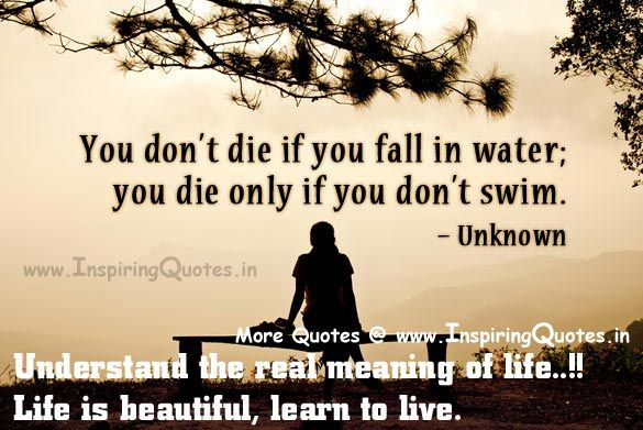 Meaning Of Life Quotes | Great Quotes about Life, Thoughts Understand the meaning of Life, Life ...